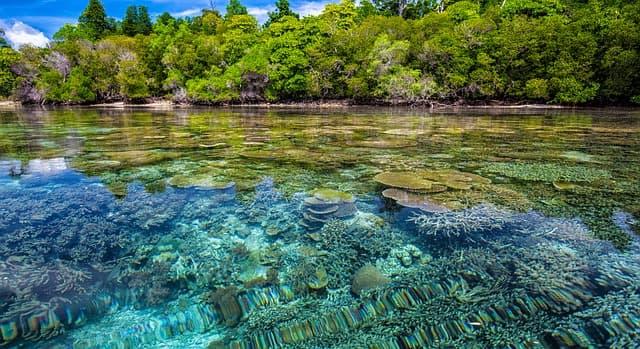 arrecifes-donde-vive-yemayá