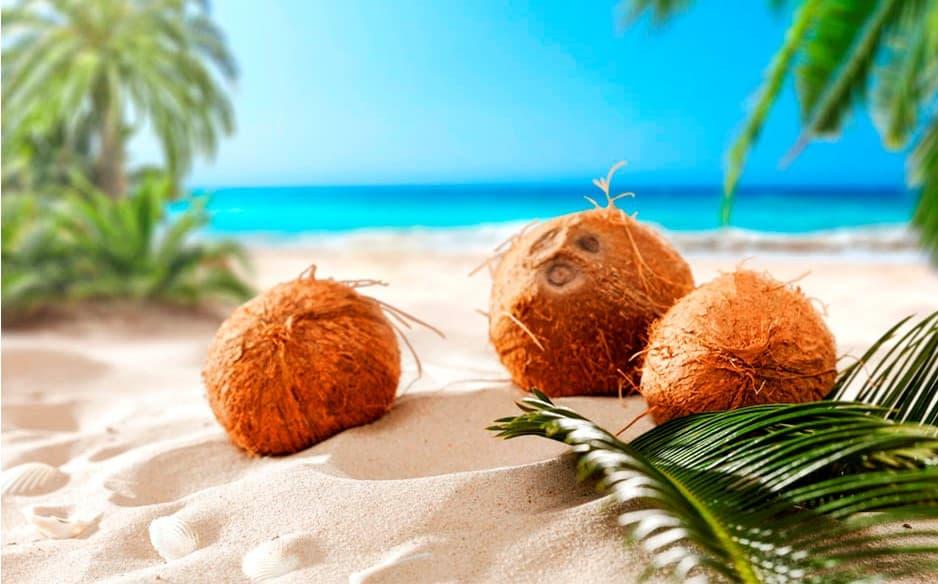 cocos-para-yemaya